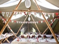bunting in the tipi2